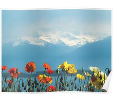 Swiss Flowers Poster
