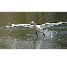 Cleared For Landing ! Photographic Print