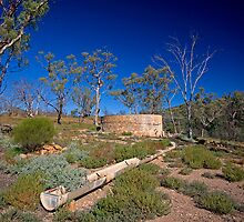 Well on the Wortupa Loop Track, Gammon Ranges, SA by Richard  Windeyer