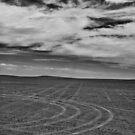 Desert Footprints  by Amir Sourial