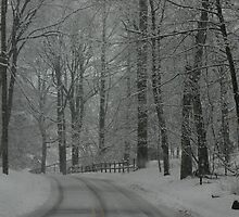 Snowy country roads by Éilis  Finnerty Warren