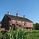 Spring at the Red Barn by AngieDavies