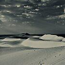 Desert Destiny  by Amir Sourial