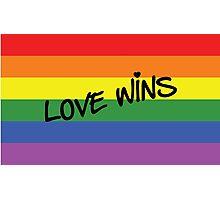 Love Wins! Photographic Print