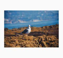 seagull Kids Tee