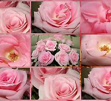 Pink Rose Collage by AuntDot