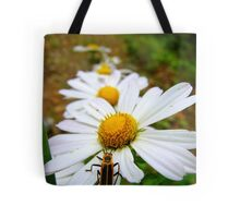 Marguerite Daisies and a Margined Leatherwing  Tote Bag