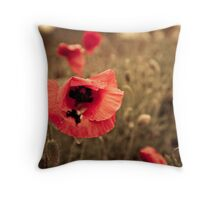Moving on to Brighter Pastures Throw Pillow