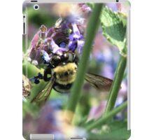 Michigan City, IN: Bumble Bee on Purple Flowers iPad Case/Skin