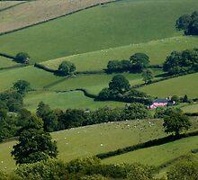 Devon's Rolling Farmland by rodsfotos