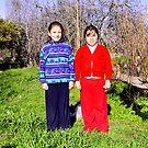 Chile, Model Beginnings by Daidalos