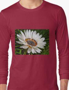 Beautiful White Gazania Flower Long Sleeve T-Shirt