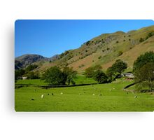 Deepdale Valley, the Lake District Canvas Print