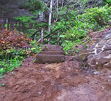 Steps At Neptune Beach....Oregon by trueblvr