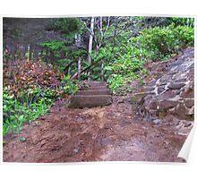 Steps At Neptune Beach....Oregon Poster