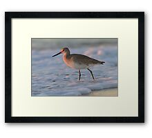 Surf Walker Framed Print