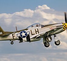 "P-51D Mustang 45-15118/LH-F G-MSTG ""Janie"" by Colin Smedley"