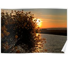 sunset  in Canet Plage Poster