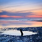 Dusk, Findhorn by Christopher Thomson