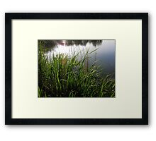 Backlit ... Framed Print