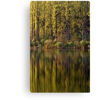 Lake Side Reflections Canvas Print