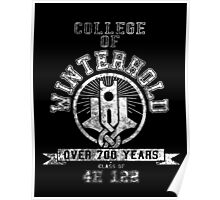 Skyrim - College of Winterhold Poster