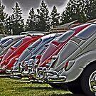VW back sides by DiamondCactus