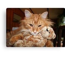 Orange Tabby Cat with His Stuffed Buddy Canvas Print