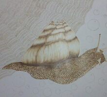 Snail Adventure (pyrography on paper) by Dragonfairy