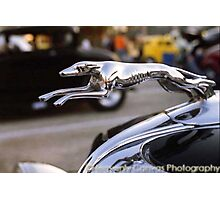 1934 Ford Roadster Greyhound Hood Ornament Photographic Print