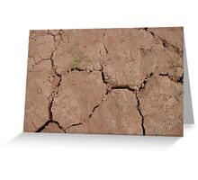 Drought Greeting Card