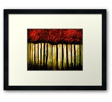Trees...Capturing Light Framed Print