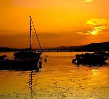 Westcountry Gold. by rodsfotos