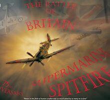 The Battle of Britain by Nigel Bangert