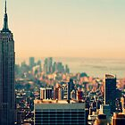 Cityscape by Selena Chaplin