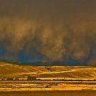 Why I Love Montana, 3 by Bryan D. Spellman