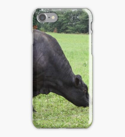 A whole lotta bull iPhone Case/Skin