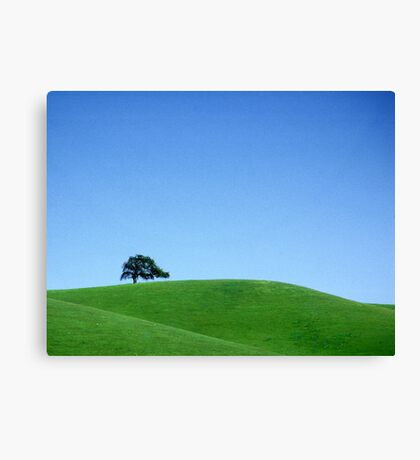 Lone Tree & Green Hills Canvas Print