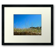 Sandon Sand Dune Grass Framed Print