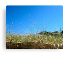Sandon Sand Dune Grass Canvas Print