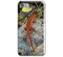 Woodland Critter iPhone Case/Skin