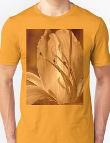 Traditional Unisex T-Shirt