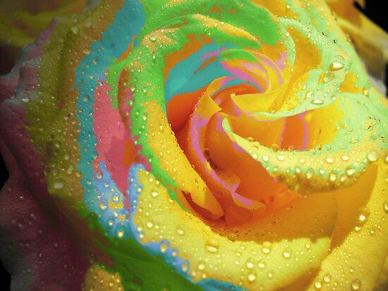Rainbow Cocktail. by Vitta
