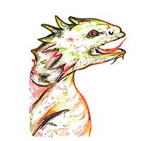 Little Green Dragon Photographic Print