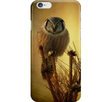 The great stare down iPhone Case/Skin