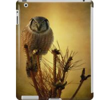 The great stare down iPad Case/Skin
