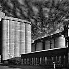 silos by Kym Howard