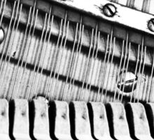 Piano Strings, Hammers & Pegs Sticker