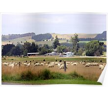 Farming New Zealand Poster
