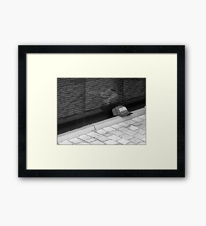 Remembering Framed Print